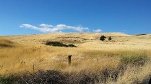 Dalles Mountain Ranch_September 2014
