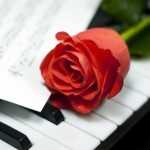 Musical Rose on the Keys