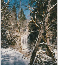 A Serendipitous Moment: A Birthday Walk to the Frozen Waterfall
