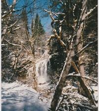 Frozen Waterfall View