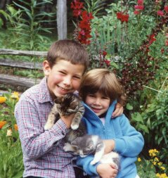 Snuggling kitties on the farm