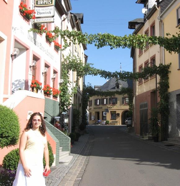 mosel_valley_grape_vine_street_germany