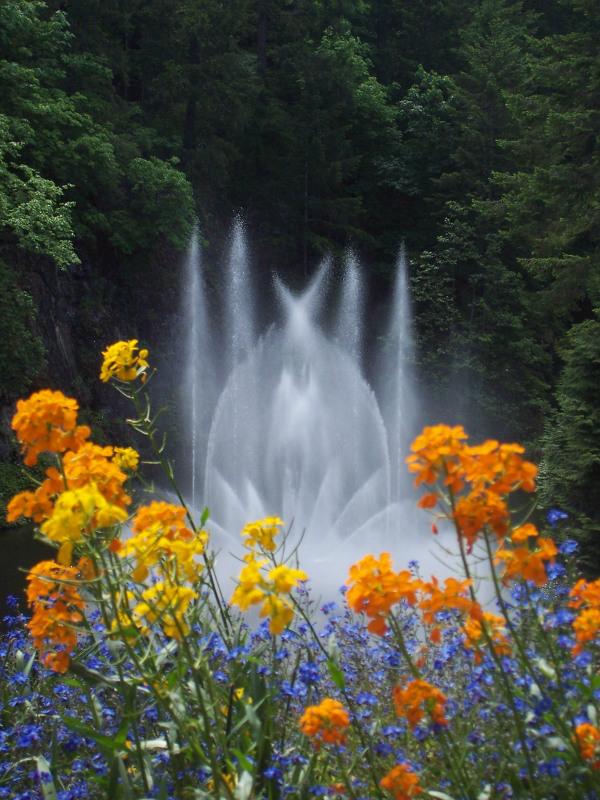 victoria_canada_butchart_gardens